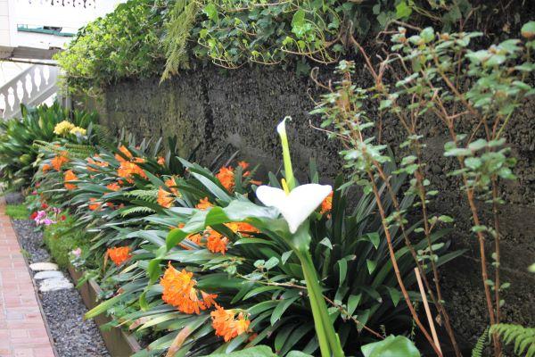 the raford inn gardens